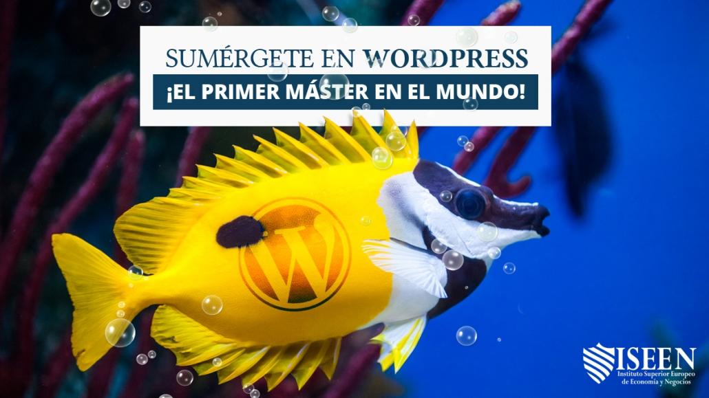 ISEEN Master de WordPress